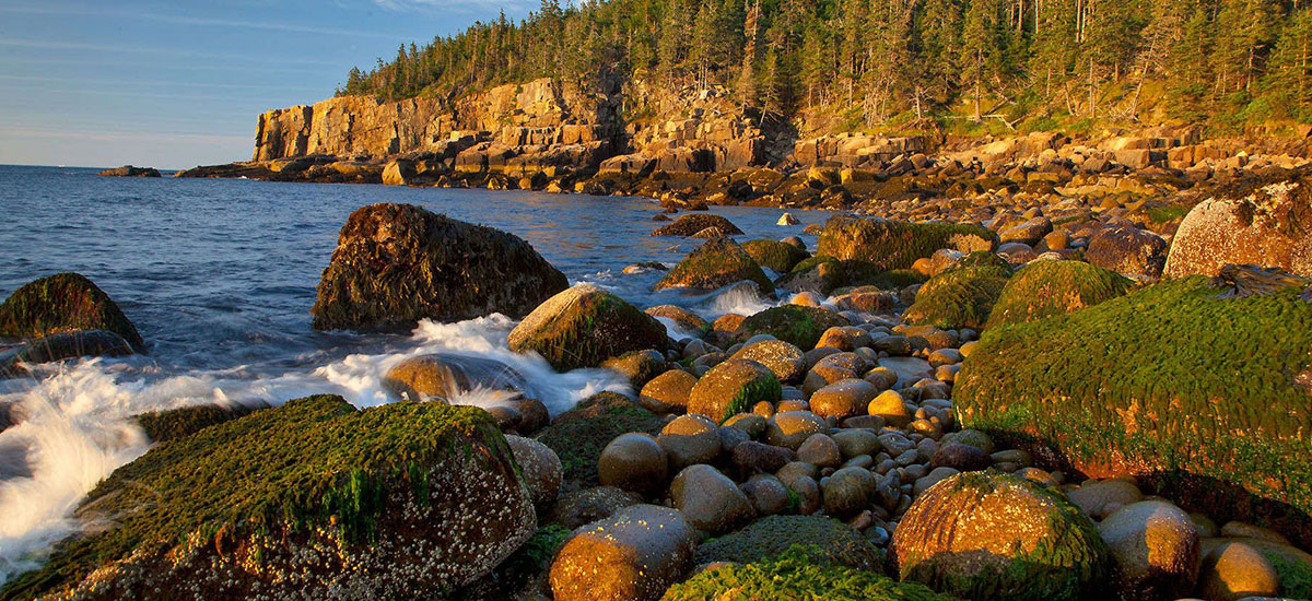 Coastal Maine – Painting Dramatic Seascapes and Sketching Nature's Details
